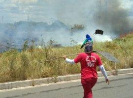 [Incêndios atingem todas as regiões de Camaçari na manhã deste domingo]