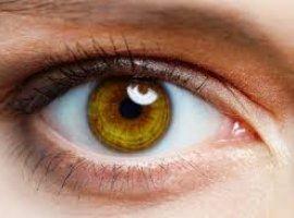[Shopping de Salvador oferece exames oftalmológicos gratuitos]