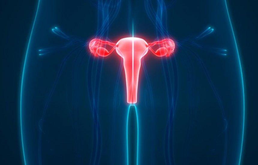 [Médica ensina 3 passos para você se proteger do câncer no colo do útero]