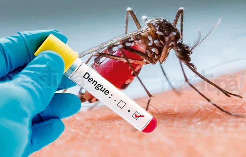 [Epidemia de dengue já atinge 354 municípios baianos: casos aumentaram 561,6%]