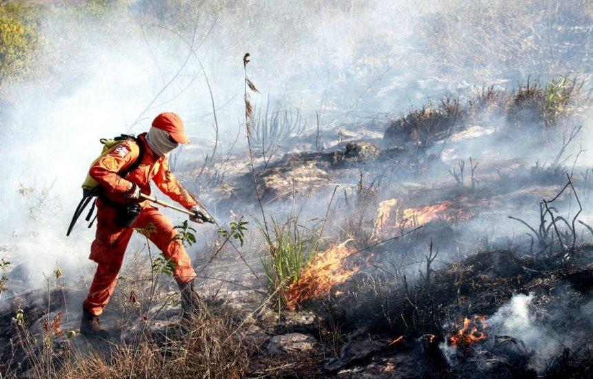 [Governo investe R$ 6,7 milhões em ações contra incêndios florestais na Bahia]
