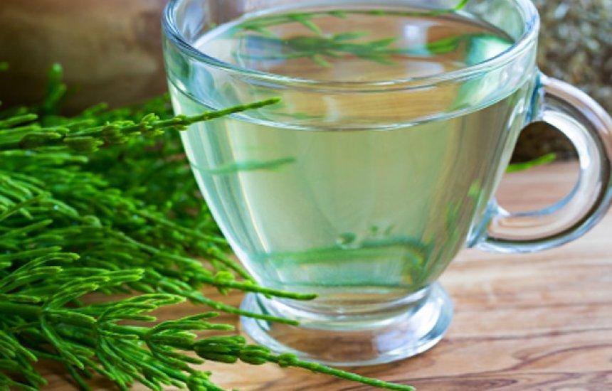 [Comece bem a semana: veja cinco receitas de chás detox]