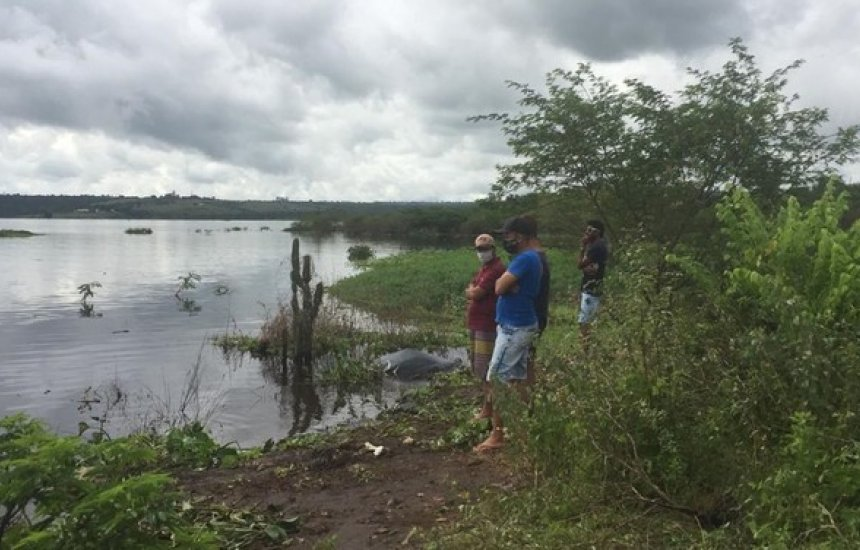 [Corpos de duas crianças que sumiram após embarcação virar na Bahia são achados]
