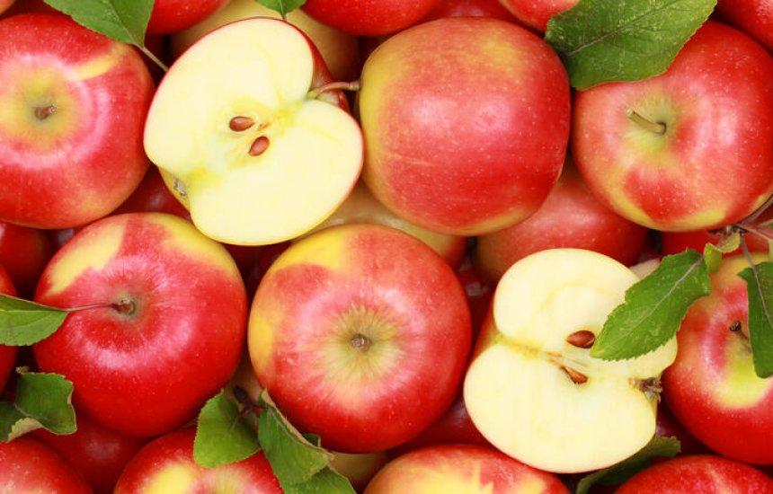 [Você deve começar a proteger seu fígado hoje mesmo com estes 6 alimentos]